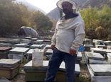 انتخاب شرکت  تعاونی کشاورزی زنبورداران امید مردانقم شهرستان خداآفرین بعنوان شرکت تعاونی نمونه استان