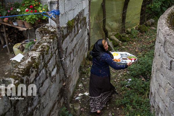نذری عاشورا در روستای صیقلسرا