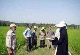 توسعه بخش کشاورزی با شبکهسازی و ارتباطات با کنشگران امکانپذیر است