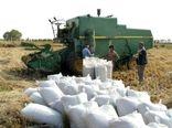 تسویه مطالبات کشاورزان تا پایان مهر ماه