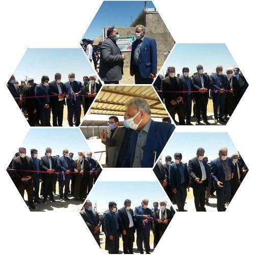 افتتاح  گاوداری گاو شیری در بیضا