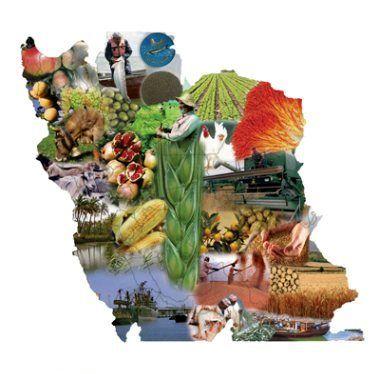 کشاورزی ایران در مسیر مدرن شدن