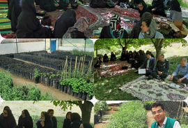 برگزاری کارگاه آموزشی مدیریت مزرعه و تغذیه گیاهی محصول گوجی بری در روستای کردلر شهرستان کلیبر
