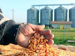 تامین 10.5 میلیون تن نهادههای کشاورزی تاکنون
