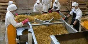 افزایش توان جذب ماده خام کشاورزی در واحدهای صنایع تبدیلی