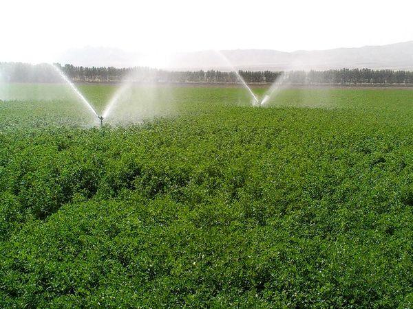 افزایش طرحهای آبرسانی در شهرستان اردل
