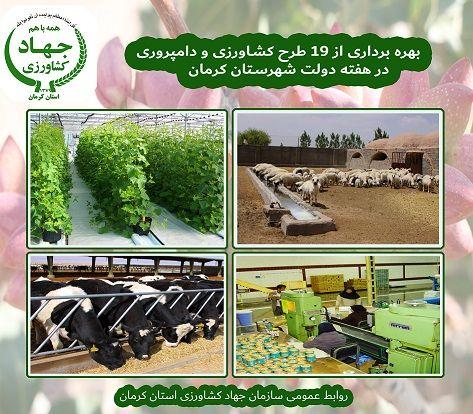 19 طرح کشاورزی و دامپروری شهرستان کرمان در هفته دولت به بهره برداری می رسد