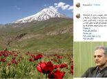 پیام وزیر جهاد کشاورزی در خصوص حفظ حقوق عامه در اینستاگرام