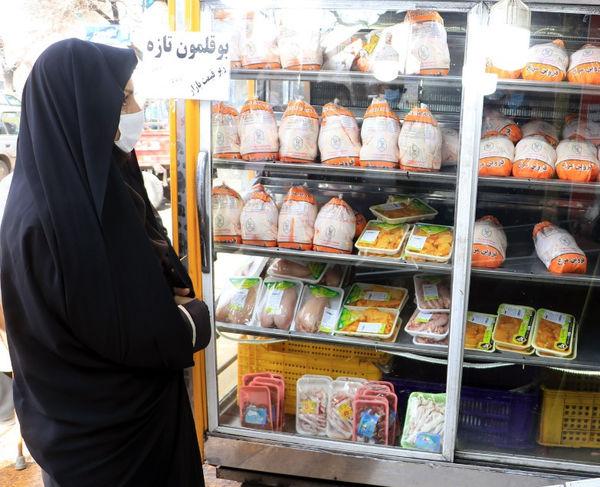 توزیع بیش از ۱۶ هزار و ۷۸۰ تن مرغ گرم در قزوین