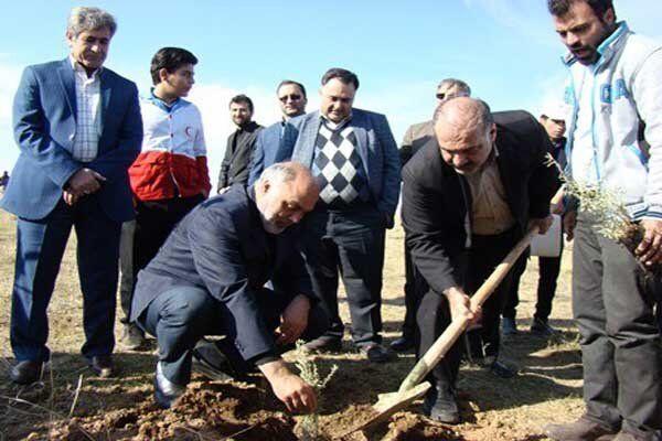 طرح بسیج همگانی نهالکاری در استان تهران آغاز شد