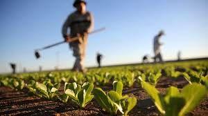 وام های کشاورزان امهال شود