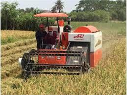 برداشت مکانیزه برنج در 165 هزار هکتار شالیزار مازندران