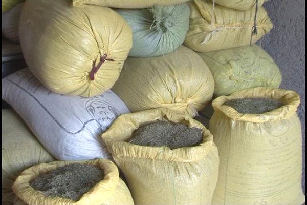 دو انبار داروی گیاهی و ادویه  قاچاق در کرمان پلمپ شد