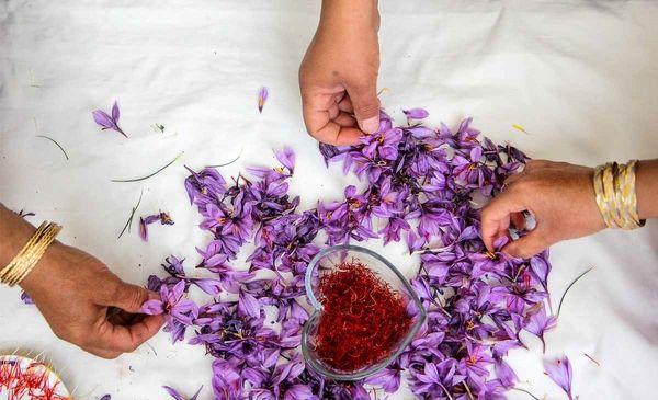 جای پای افغانستان در صادرات زعفران ایران