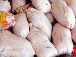 ۶۱ درصد گوشت مرغ استان البرز توسط ساوجبلاغ تأمین میشود