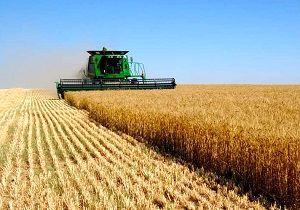 امهال ۵۶۴ پرونده تسهیلات کشاورزی