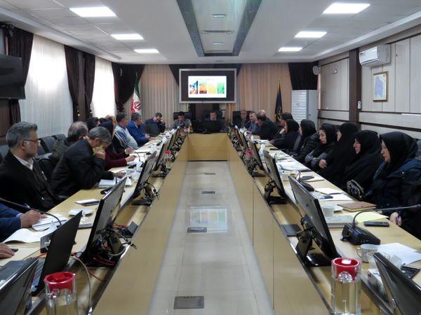 بازدید مداوم اعضای شبکه مراقبت از مزارع گندم و کلزای خراسان شمالی