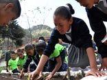 نقش مدارس مکزیک در فرهنگسازی مصرف خوراکیهای سالم