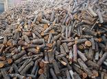 قاچاق چوب و زغال با خودروهای یخچالدار حمل مواد غذایی