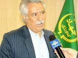 کاشت بیش از 6 هزارو 200 هکتار ذرت دانه ای در شهرستان کرمانشاه