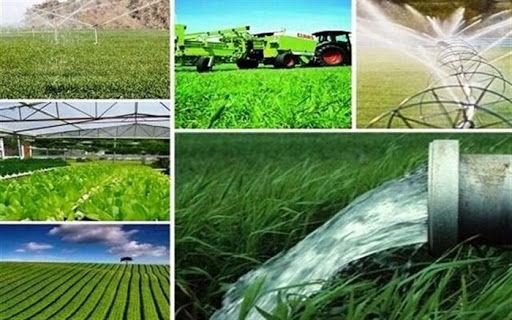 اولویت کشاورزی قراردادی در استان کرمان