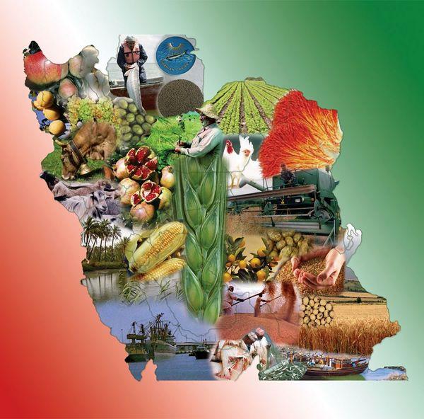 ارزآوری 896 میلیون دلاری صادرات بخش کشاورزی و غذا در دو ماهه اول سال 1400