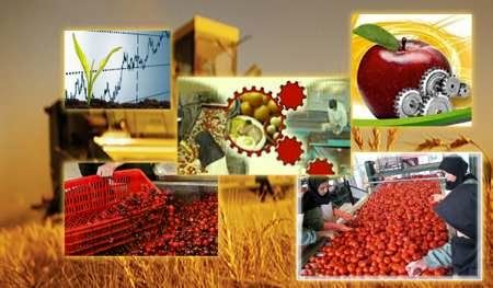 ایجاد حلقه زنجیره تولید عامل افزایش ارزش افزوده کشاورزی