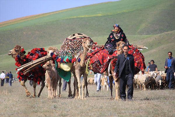 پرداخت تسهیلات سرمایه در گردش پرواربندی بره به عشایر قزوین