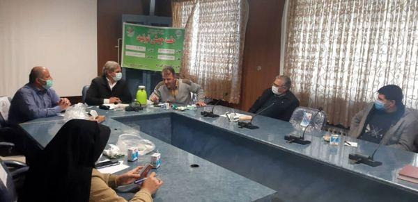وضعیت کشت کلزا در مزارع کشاورزی شهرستان تاکستان بررسی شد