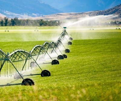 212 عنوان پروژه در 15 حوزه تحقیقات اقتصاد کشاورزی
