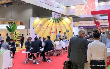 70 درصد از بازدیدکنندگان از آسیا آمده بودند
