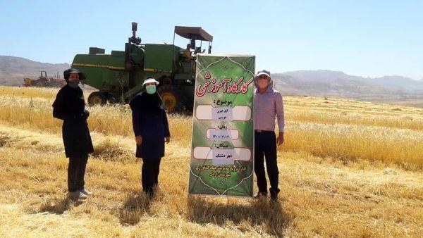 عملیات کیل گیری از مزارع شهرستان اردل آغاز شد