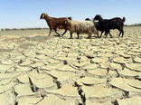 خشکسالی در چهارمحال و بختیاری 12 ساله شد