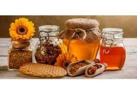 تولید 13 کیلو عسل در هر کندو/ تولید 900 تنی عسل در تنکابن
