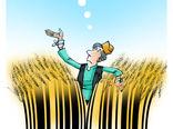تعیین قیمت گندم متناسب با تورم -کارتون فیروزه مظفری