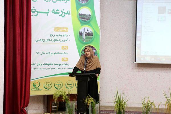 معرفی ارقام جدید برنج با عملکرد بالاتر و متناسب ذائقه ایرانیان