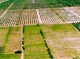 اجرای طرح کاداستر گامی بزرگ در راستای توسعه کشاورزی است