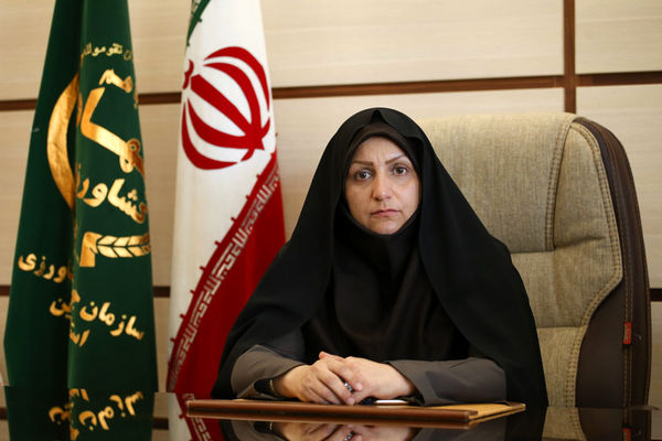 پیام تبریک رئیس سازمان جهادکشاورزی استان قزوین  به مناسبت انتصاب وزیر جهاد کشاورزی