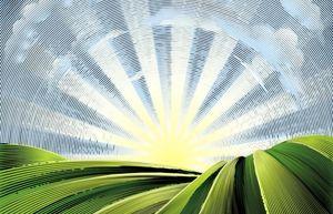 تاثیر کشاورزی در استفاده از کاتالیزورها