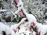 بارش برف بهاری - غرقآباد