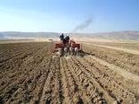 کشت پاییزه محصولات در ۲۰۰ هزار هکتار اراضی خراسان شمالی آغاز شد