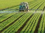 ضرورت تشکیل زنجیره تولید کشاورزی فراسرزمینی