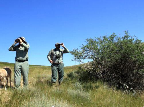 ۴۵ محیطبان بیش از ۱۹۴ هزار هکتار عرصه را پایش میکنند