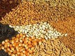 توزیع ۲۵ هزار تن نهادههای دام طیور در بین تولیدکنندگان استان گیلان