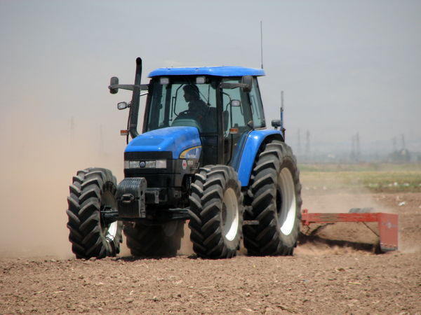12500 هکتار از مزارع کشاورزی شهرستان البرز به زیر کشت گندم و جو پاییزه می رود