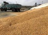 توزیع مجدد جو یارانهای در جهاد کشاورزی اسفراین