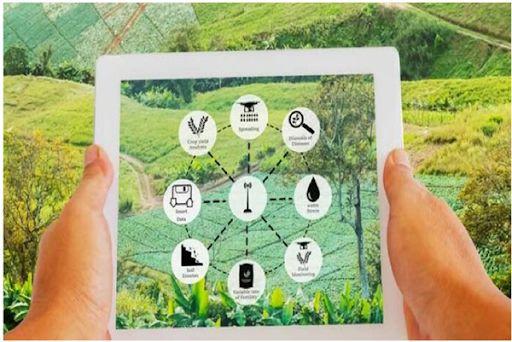 برگزاری کارگاه آموزشی سیستم یکپارچه سازی اطلاعات کشاورزی(سیاک) در شهرستان شهربابک