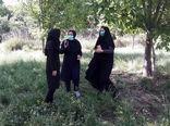 رصد باغات حوزه مرکز خدمات رستم آباد شهرستان اردل