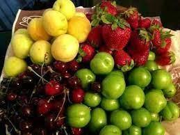 تولید 1800 تن میوه دانه دار و دانه ریز در بابل