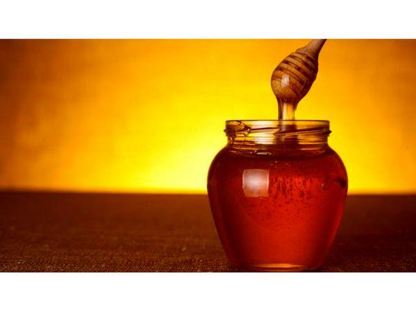 تولید سالانه 14 تن عسل در محمودآباد